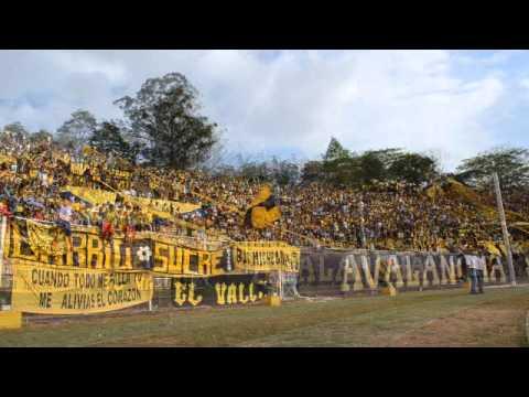 AvSr - 27/04/2014 (Dvo, Táchira 3 Caracas 2) - Avalancha Sur - Deportivo Táchira