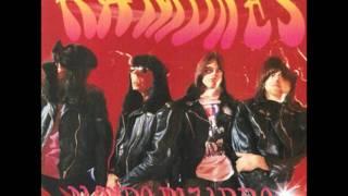 Touring - Ramones