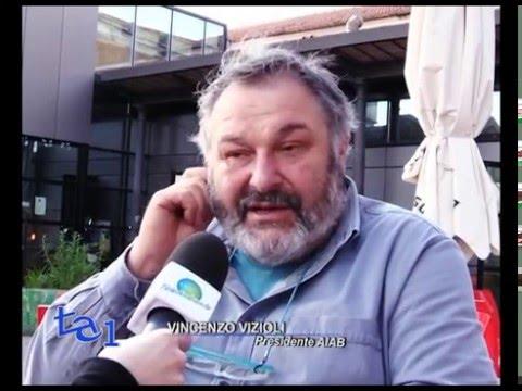 ETRURIA: M5S E SEL CHIEDONO DIMISSIONI BOSCHI