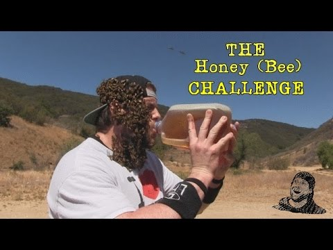 Watch a Man Chug a Gallon of Honey While Wearing a Faceful of Bees