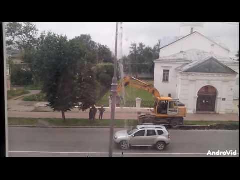Видео: в Великом Новгороде бульдозер сломал, а затем «починил» дерево
