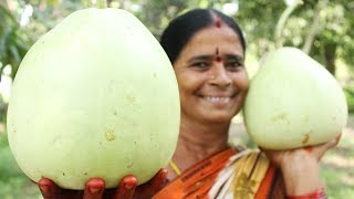 How To Cook Bottle Gourd Recipe