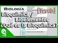 Biolog A  Bioqu Mica  Bioelementos  Qu  Es La Bioqu Mica 1 4