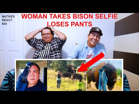 Bison Tosses Woman Out Of Her Pants - Natives React #24