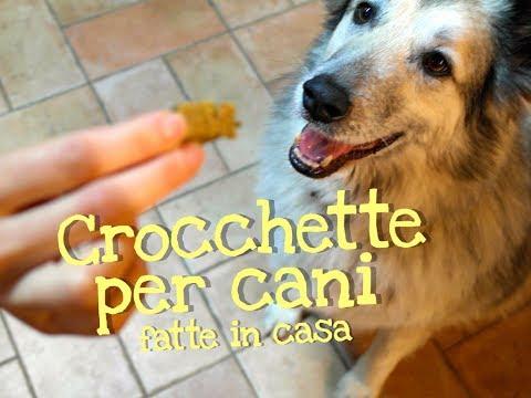 diy: crocchette salutari per cani
