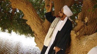Video Pohon SAHABI, Sahabat Nabi yang Masih Hidup hingga Kini MP3, 3GP, MP4, WEBM, AVI, FLV April 2019