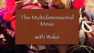 The Multidimensional Mesa with Wake