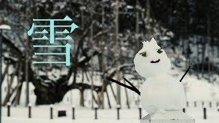 根尾市場の雪化粧