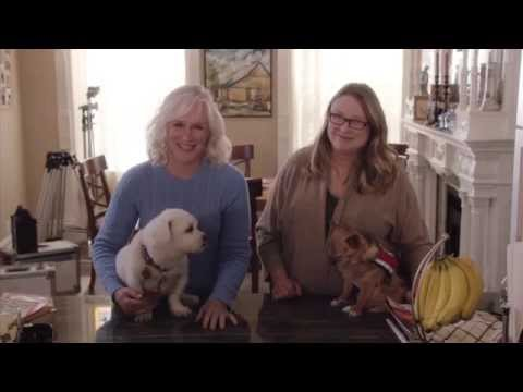 "Behind the PSA: ""Crazy About Dogs"""