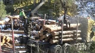 Tømmerleveranse frå Frønningen