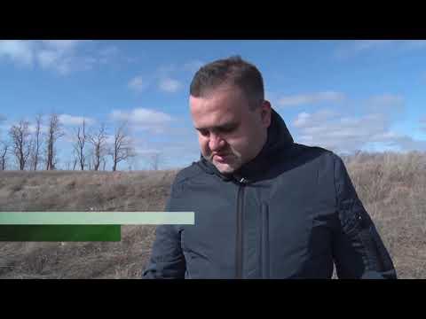 Незаконная свалка на землях сельхозназначения