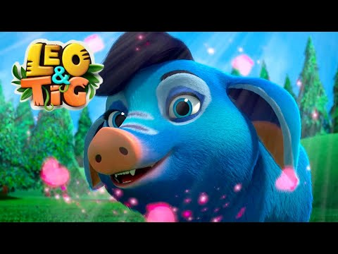 LEO and TIG 🦁 NEW 🐯 Episode 25 - Cuba in Love ❤️ Moolt Kids Toons Happy Bear