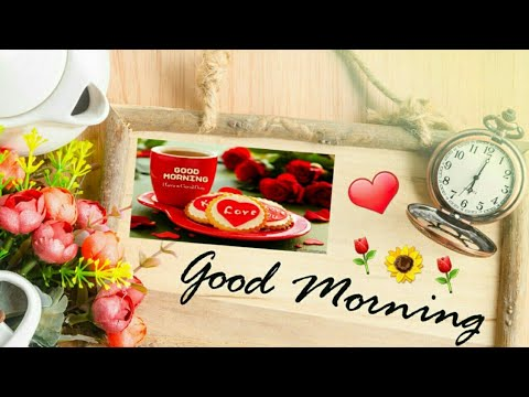 Good morning SMS - Good Morning Wishes WhatsApp,Latest Good Morning Wishes, Greetings,sms,status  videos WhatsApp