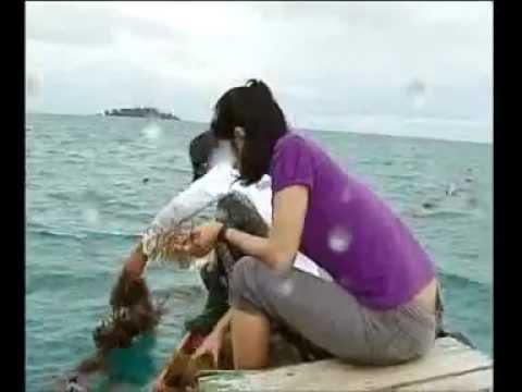 Sensasi mancing baronang bersama Mata Pancing MNC TV