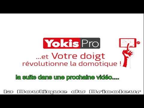 BOX DOMOTIQUE YOKIS HUB 5454495