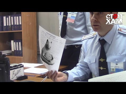 СтопХам - По встречке в полицию