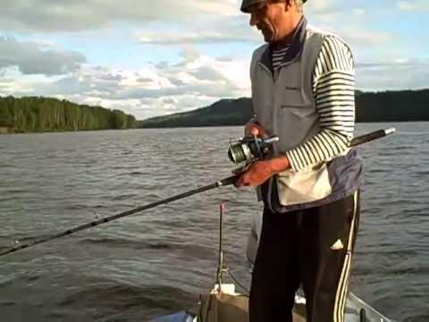 рыбалка на сома на каме с квоком