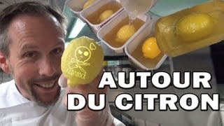 Video Citron en chocolat - Moule gélatine - pâtisserie - dessert - Albarock MP3, 3GP, MP4, WEBM, AVI, FLV Desember 2018