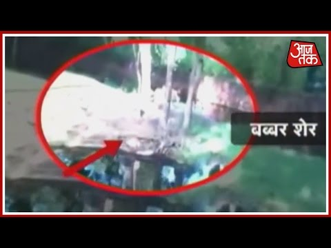 Video Vishesh: Drunk Man Escapes Unhurt From Lion Enclosure In Hyderabad Zoo download in MP3, 3GP, MP4, WEBM, AVI, FLV January 2017