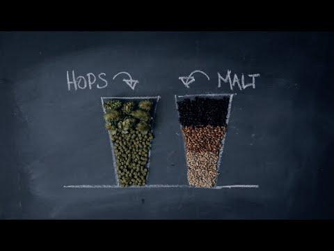 Craft Beer 101 - Crafting Better Beer Drinkers