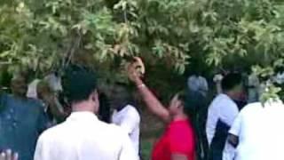 Video New Taha Suliman-Fares Arbab حفله المرسى  رحله MP3, 3GP, MP4, WEBM, AVI, FLV Agustus 2018