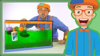 Video Blippi Slime | Sink or Float Science for Kids MP3, 3GP, MP4, WEBM, AVI, FLV April 2019