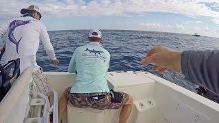 Video Top 10 Craziest Fishing Moments of 2016 MP3, 3GP, MP4, WEBM, AVI, FLV Agustus 2018
