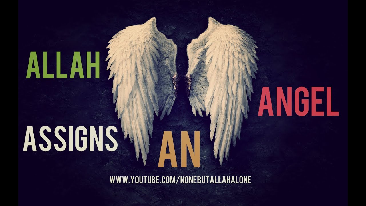 Allah Assigns An Angel Over You ┇Powerful Reminder ᴴᴰ