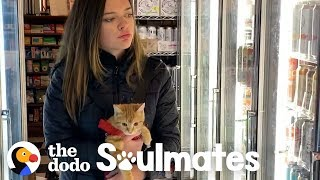 Little Rescue Kitten Is Basically A Baby! | The Dodo Soulmates by The Dodo