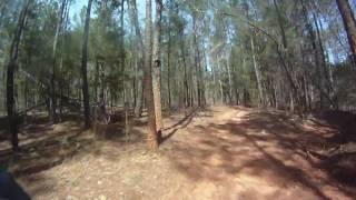 1. KFX 450R TOP SPEED ON TRAIL