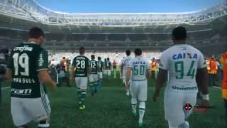 Confira o jogo em que o Palmeiras se sagrou campeão brasileiro de 2016 !
