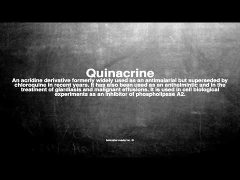 Medical vocabulary: What does Quinacrine mean