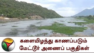 Mettur dam and its areas lost its significant greeneriesConnect with Puthiya Thalaimurai TV Online:SUBSCRIBE to get the latest Tamil news updates: http://bit.ly/1O4soYPVisit Puthiya Thalaimurai TV WEBSITE: http://puthiyathalaimurai.tv/Nerpada Pesu: https://www.youtube.com/playlist?list=PL-RDFpvLYFEWCShKiMrhdEw7wL434UOjlAgni Parichai: https://www.youtube.com/playlist?list=PL-RDFpvLYFEWvJvAnpDCIqQSCVxkxTq9HPuthu Puthu Arthangal: https://www.youtube.com/playlist?list=PL-RDFpvLYFEVx-vz-ZX-TM4tukMkGK95_Like Puthiya Thalaimurai TV on FACEBOOK: https://www.facebook.com/PutiyaTalaimuraimagazineFollow Puthiya Thalaimurai TV TWITTER: https://twitter.com/PTTVOnlineNewsWATCH Puthiya Thalaimurai Live TV in ANDROID /IPHONE/ROKU/AMAZON FIRE TVPuthiyathalaimurai Itunes: http://apple.co/1DzjItCPuthiyathalaimurai Android: http://bit.ly/1IlORPCRoku Device app for Smart tv: http://tinyurl.com/j2oz242Amazon Fire Tv:     http://tinyurl.com/jq5txpvAbout Puthiya Thalaimurai TV Puthiya Thalaimurai TV (Tamil: புதிய தலைமுறை டிவி) is a 24x7 live news channel in Tamil launched on August 24, 2011.Due to its independent editorial stance it became extremely popular in India and abroad within days of its launch and continues to remain so till date.The channel looks at issues through the eyes of the common man and serves as a platform that airs people's views.The editorial policy is built on strong ethics and fair reporting methods that does not favour or oppose any individual, ideology, group, government, organisation or sponsor.The channel's primary aim is taking unbiased and accurate information to the socially conscious common man. Besides giving live and current information the channel broadcasts news on sports,  business and international affairs. It also offers a wide array of week end programmes. The channel is promoted by Chennai based New Gen Media Corporation. The company also publishes popular Tamil magazines- Puthiya Thalaimurai and Kalvi. The news center is based in Chennai city, supported by a sprawling network of bureaus all over Tamil Nadu. It has a northern hub in the capital Delhi.The channel is proud of its well trained journalists and employs cutting edge technology for news gathering and processing.