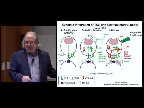 Video Immune Checkpoint Blockade in Cancer Therapy download in MP3, 3GP, MP4, WEBM, AVI, FLV January 2017