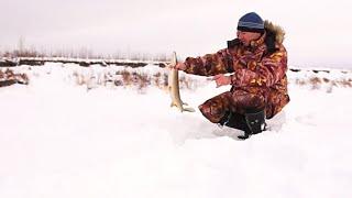 Зимняя рыбалка. Один на реке (Январь 2015. День 1)