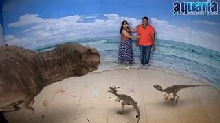 3D Illusion Show In Kuala Lumpur Aquaria, Malaysia
