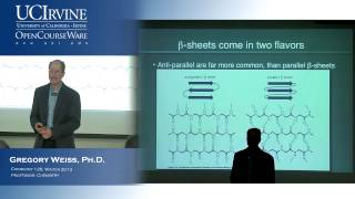Intro To Chemical Biology 128. Lecture 11. Proteins And Ammino Acid Conformations, Part 2.