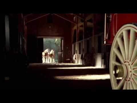 Beer Commercial Budweiser Clydesdale Dream Baby