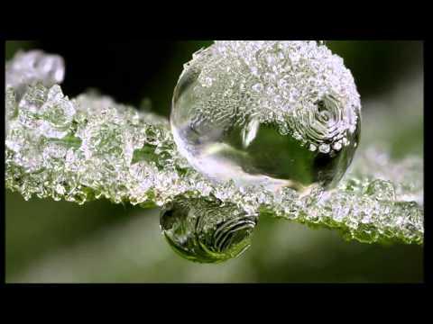 Winter dreams  Brandon 'song   -   Kelly Clarkson