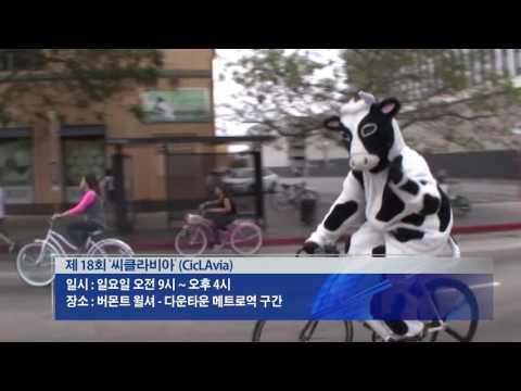 한인타운 '대규모 자전거 행사' 8.12.16 KBS America News