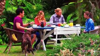 Video Buddy Dog on home and away season finale 2017 MP3, 3GP, MP4, WEBM, AVI, FLV Oktober 2018