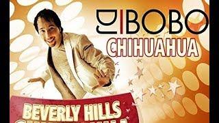DJ BoBo - BEVERLY HILLS CHIHUAHUA