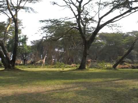 Lake Naivasha Sopa R..