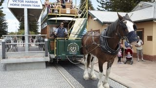 Victor Harbor Australia  city photos : Victor Harbor horse-drawn tram, South Australia