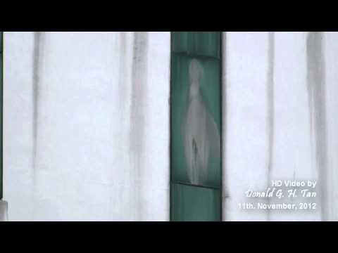 The Virgin Mary Appears to Patients on Hospital Window