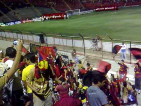 Video - Torcida Brava Ilha entrando no Estádio - Brava Ilha - Sport Recife - Brasil
