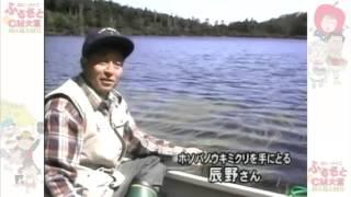 神秘的な湖