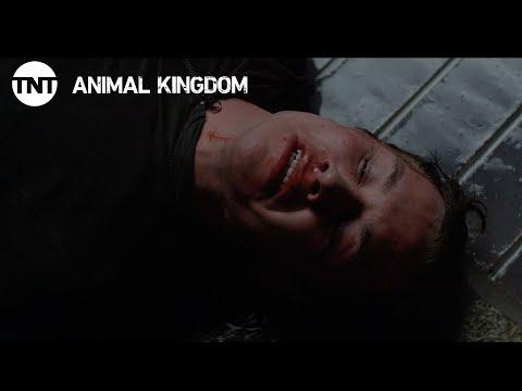 Animal Kingdom: Cry Havoc - Season 2, Ep. 6 [CLIP] | TNT
