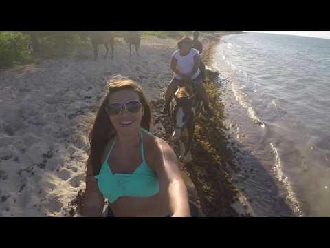 Sunset Swim Horseback Ride, Grand Cayman