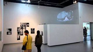Cheongwon-gun South Korea  city photos gallery : 101014 Opening reception.mov